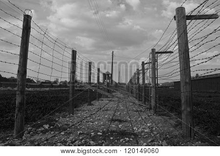 Barb-wire Fence In  Majdanek Concentration Camp