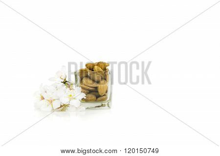 White almond flowers with raw almonds