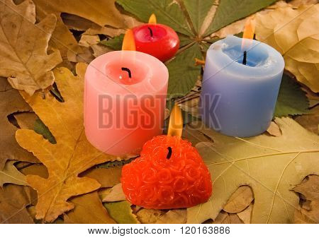 Image Of Dry Leaves And Candles Close-up