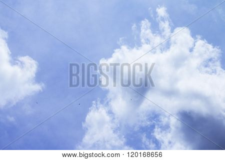 Blue Sky With Clouds And Birds