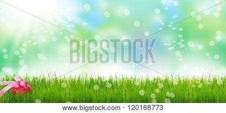 Easter Egg, Easter Meadow, Bokeh