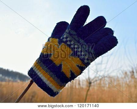 Small Children Glove