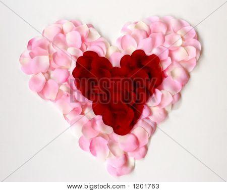 Petal Filled Heart F