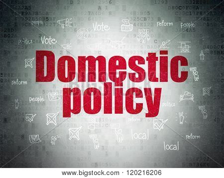 Politics concept: Domestic Policy on Digital Paper background