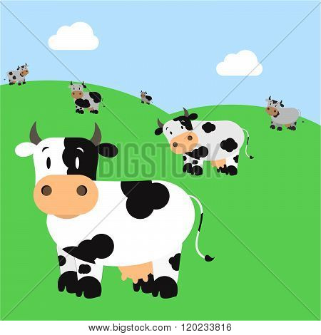 Herd Of Cattle