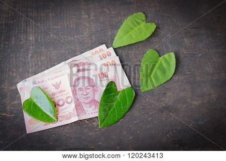 100 baht banknotes on the table and leaf green.