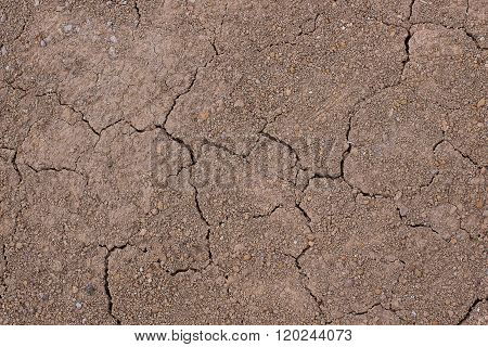 the Cracked aridity soil ground shortly after rain.