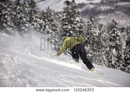 snowboarder woman enjoy freeride on fresh powder snow on beautiful sunny winter morning