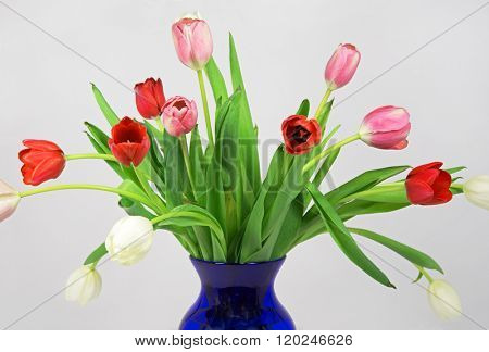 Early Spring Tulip Bouquet