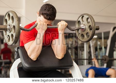 Young Man In A Preacher Bench At The Gym