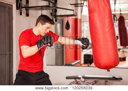 Young Man Practicing On A Punching Bag