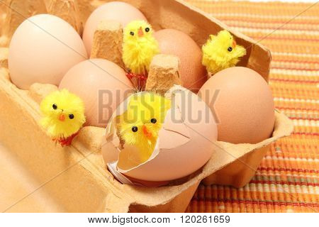 Easter Chicken In Broken Eggshell With Fresh Eggs