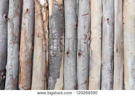 Firewood In Concatenation To Wood Background.