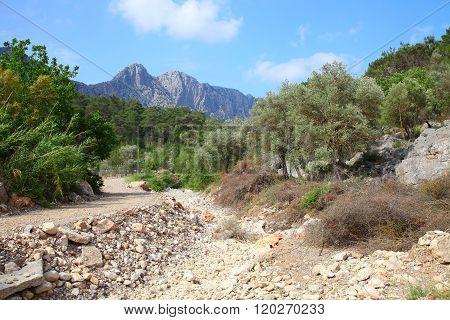 Dry Riverbed Of A Mountain River