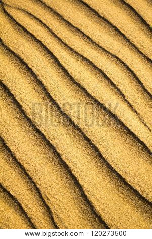 Natural Untouched Golden Sand Ripple Pattern Close Up