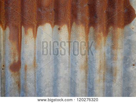 Rusted Galvanized Iron Roof