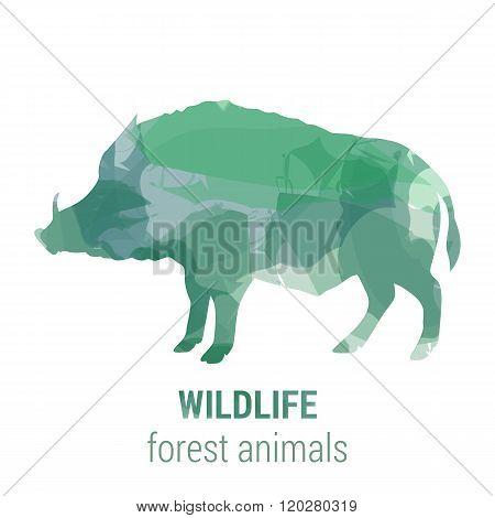 Wildlife Banner - Forest Animals