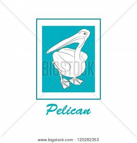 Pelican. Bird icon. The logo of the Pelican. Hand drawn vector. Turquoise frame. A bird with a large beak. Sketch illustration.