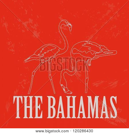 The Bahamas.  Flamingo as a national symbol of the Bahamas. Vector illustration