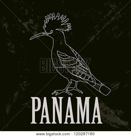 Panama. Hoopoe as a national symbol. Vector illustration