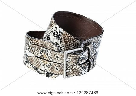 Women's Wide Belt Snakeskin With Buckle Isolated On White Background