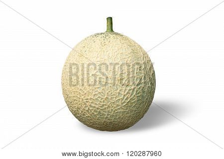 Fruit - Cantaloupe Isolate On White Background