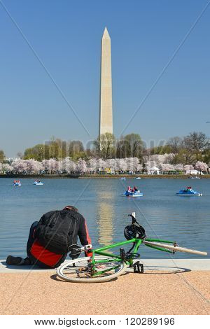 Washington DC in Spring - A tourist resting at Jefferson Memorial during Cherry Blossom Festival