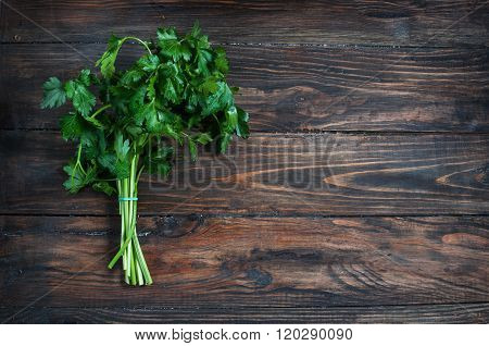 organic fresh bunch of parsley closeup on a wooden rustic table