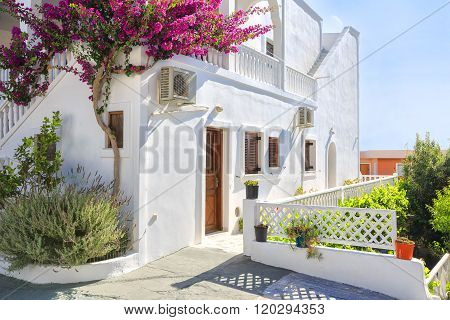 Traditional Greek house with mauve bougainvillea flowers