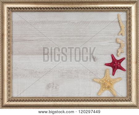 gilded picture frame with starfish inside