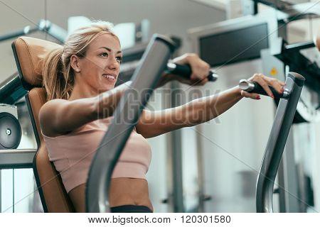 Chest Press Workout