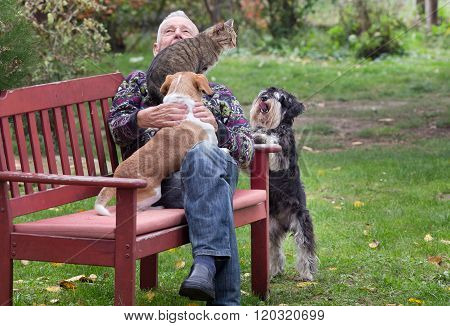 Old Man With Pets In The Park