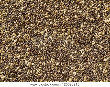 Seeds of Chia Texture