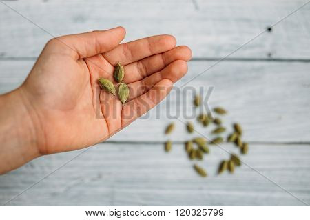 Grains Of Cardamom On A Hand