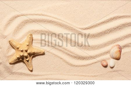 Starfish, Scallop Seashell And Two Stones On Beach Sand