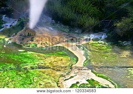 Volcanic Steam Vent