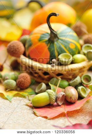 Acorns With Mini Decorative Pumpkin On Autumn Leaves