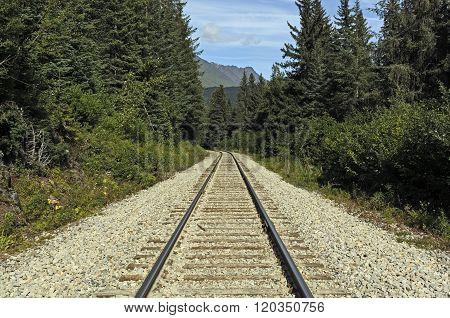 Railroad Tracks In A Remote Wilderness