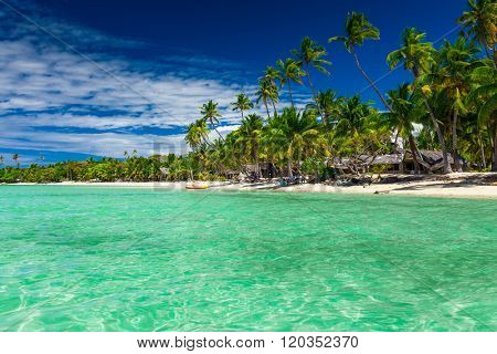 Tall coconut palm trees over tropical island resort beach in Fiji