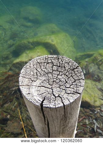 Old weathered post and algae covered stones in lake