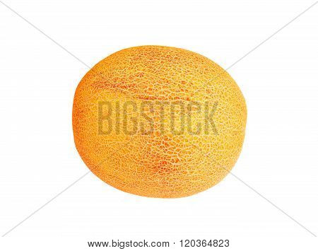 Whole Cantaloup Melon