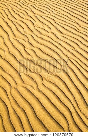 Natural Untouched Golden Sand Ripple Pattern