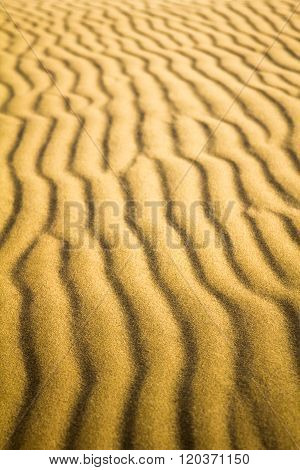 Natural Untouched Golden Sand Ripples