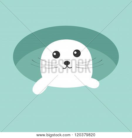 Harp Baby Seal Pup. Ice-hole Cute Cartoon Character. Blue Background. Flat Design