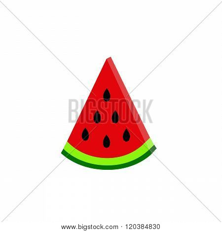 water-melon  on white background. vector. flat