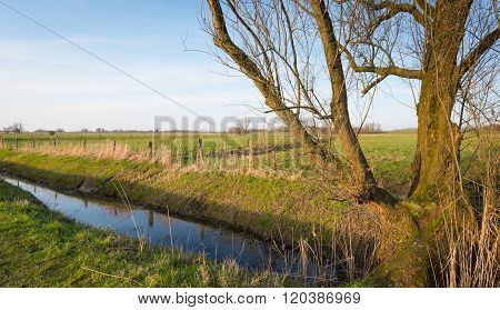 Dutch Polder Landscape At The End Of A Winter Day