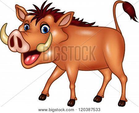Cartoon warthog isolated on white background
