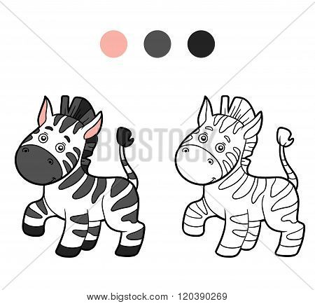 Coloring Book, Coloring Page (zebra)