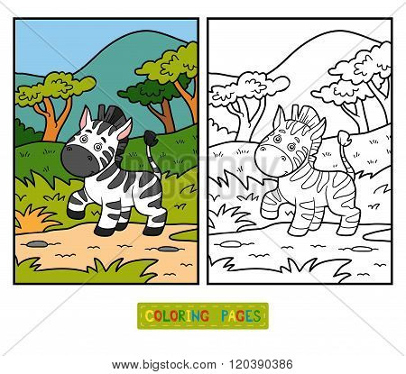 Coloring Book For Children (zebra And Background)