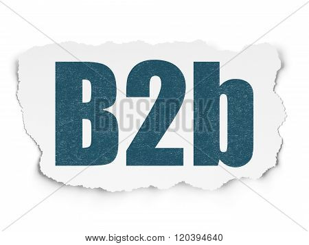 Finance concept: B2b on Torn Paper background